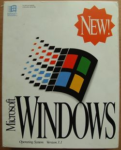 Windows 3.1 Box.jpg